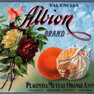 Albion Orange citrus label