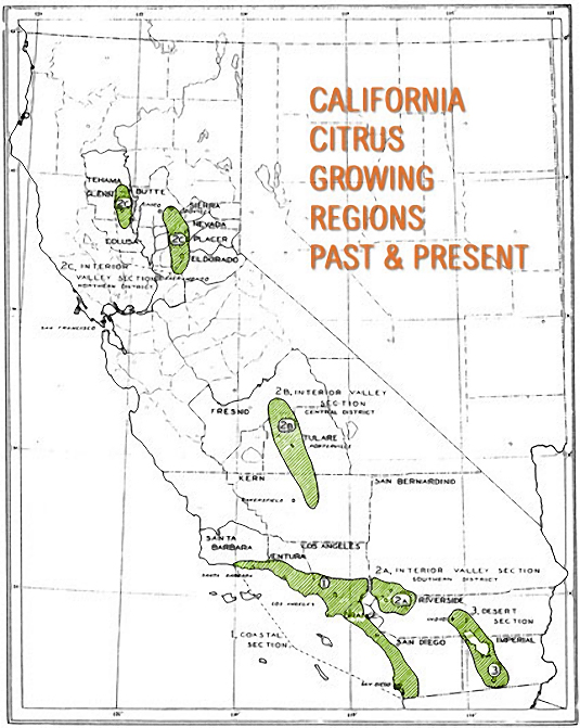 Distribution of commercial citrus sections in CA