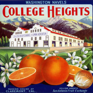 College Heights citrus label