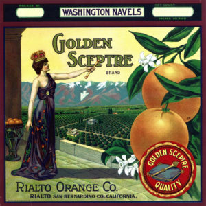 citrus labelaGolden Sceptre citrus label
