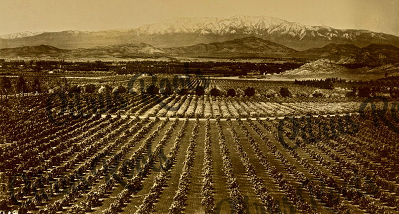 Highland Area - San Bernardino County 1910