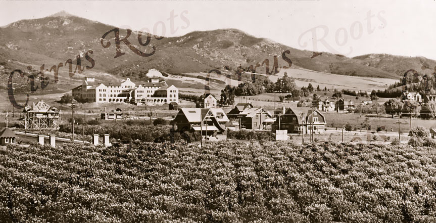 Immaculate Heart School, Hollywood 1905