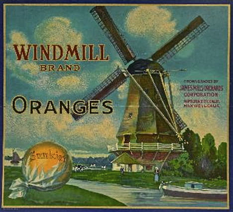 Windmill Brand Oranges